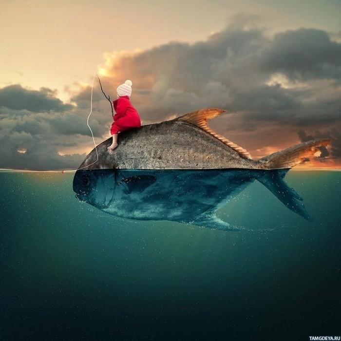 Картинка рыбы в аквариуме - 7d9