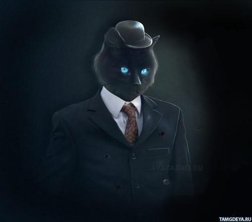 Чёрный кот в пиджаке галстуке и шляпе