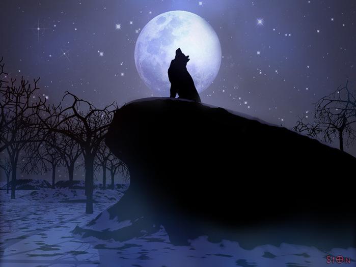 Скачать картинки на аву волков 2