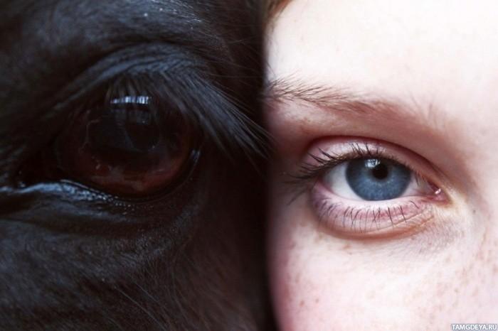 Девушки рядом тэги глаза лошади