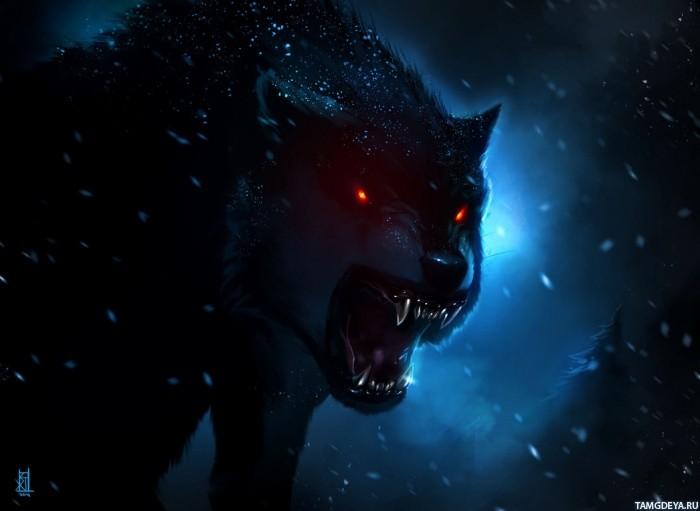 Скачать бесплатно картинки на телефон с волками