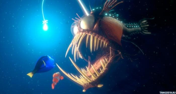 Картинка рыбы в аквариуме - eb2e