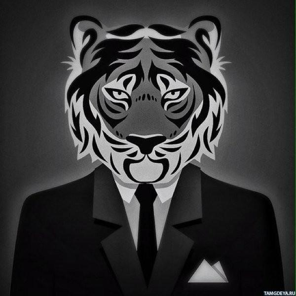 Скачать картинки на телефон бесплатно тигры 8