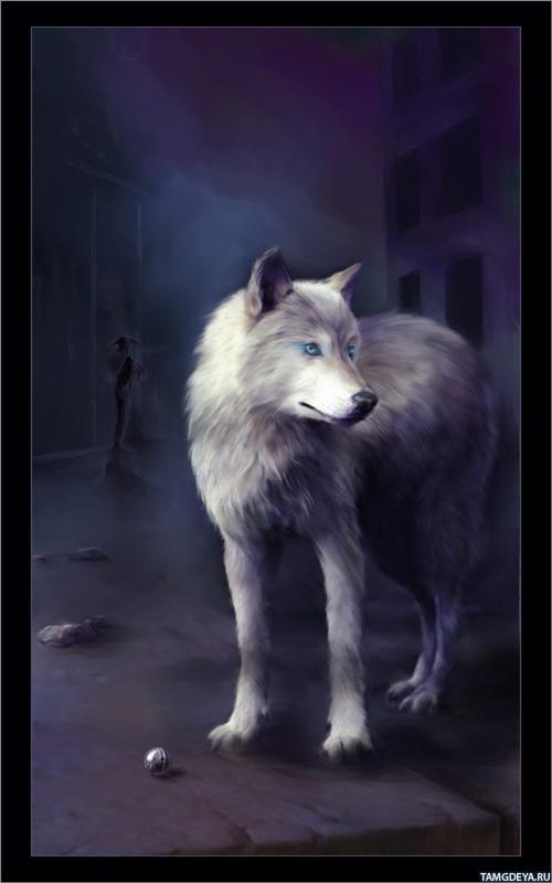 Скачать картинки волков на аву